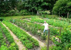 farmer Mary W